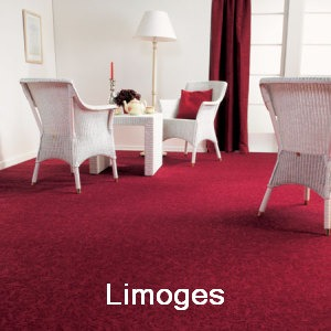 Carpet Ассошиэйтед Виверс: Лимож (kovrolin Ассосьитед Виверс: Лимоуж / Лимогес)