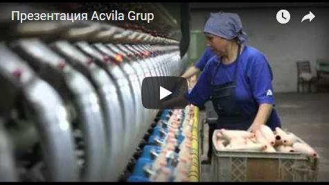 film-o-acvila-moldabela-475x267