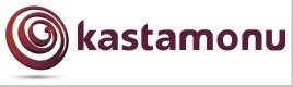 Ламинат Кастамону (лого, фото v05v0)
