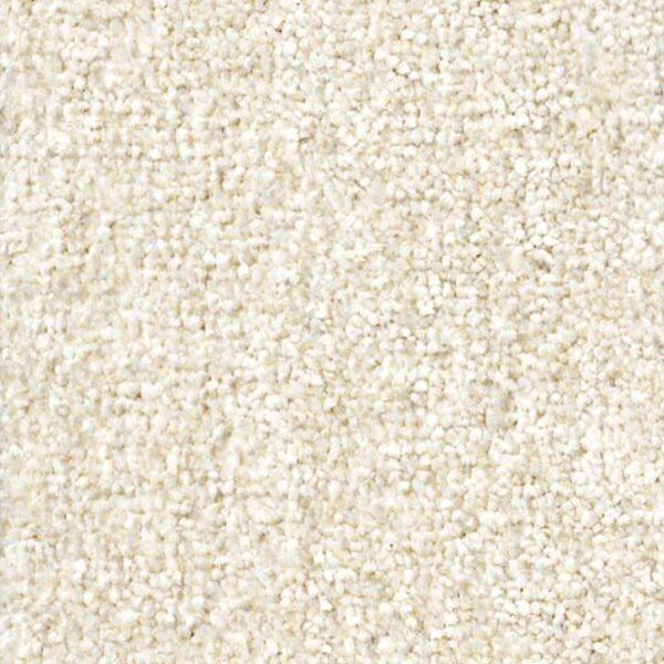 carpet-zartex-paradise-565-kn-720x720-v1v0