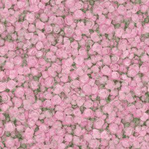 linoleum-tarkett-fleur-rose-2-720x720-v1v0q80