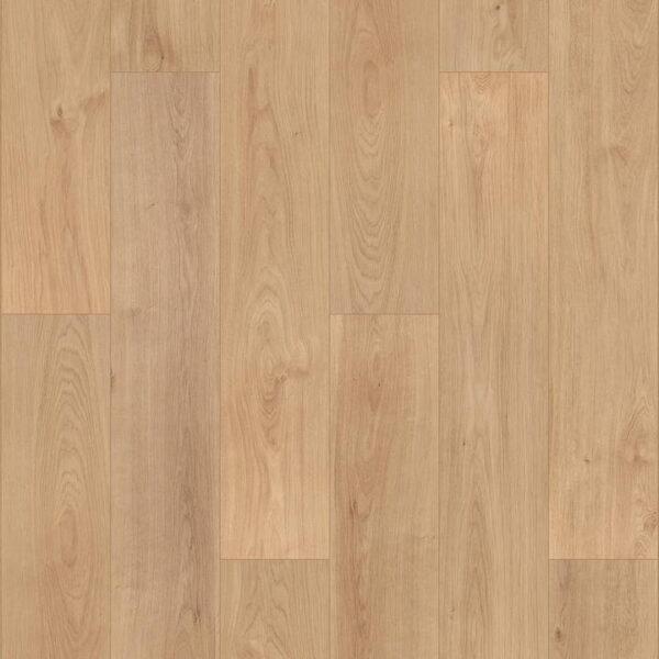 laminate-tarkett-sommer-germany-832-oak-bonn-720x720-v1v0q70